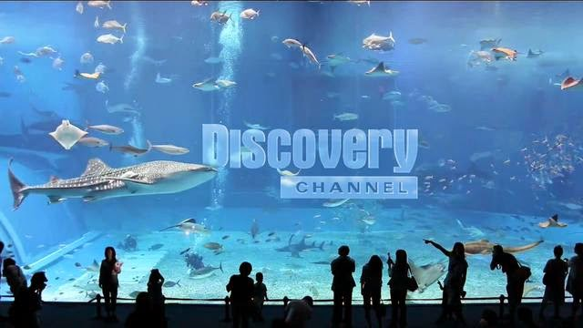 Discovery To Air Special Programming for Gears, Fears & Rears Week