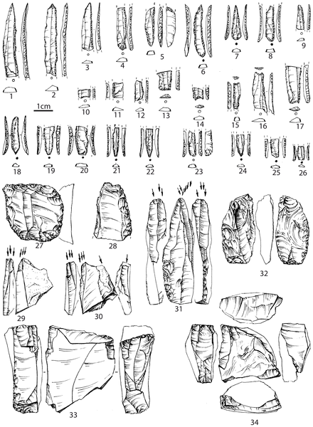 Earliest Anatomically Modern Humans Discovered in Ukraine