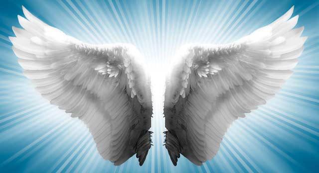 Los ángeles Y La Ley De Atracción