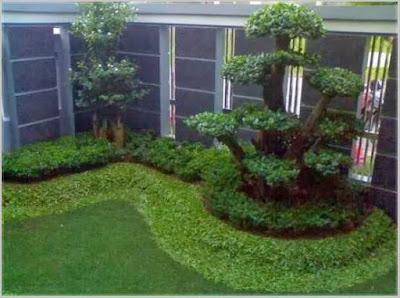 taman belakang rumah yang cantik