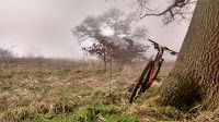 mountain bike lent up against a tree off the beaten path - by: © Paul c Walton