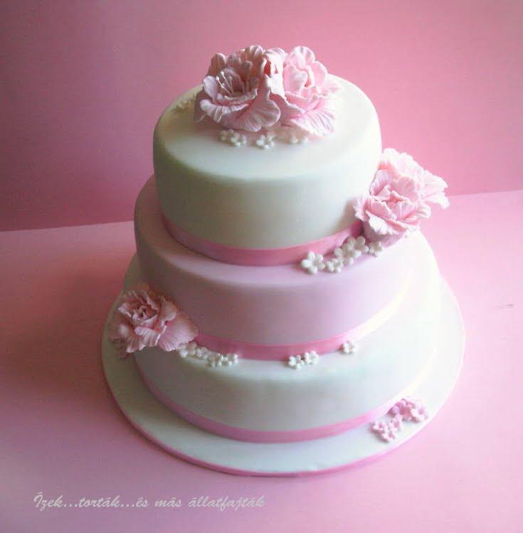 rózsaszín esküvői torta Ízektortákés más állatfajták: Rózsaszín fehér menyasszonyi torta rózsaszín esküvői torta