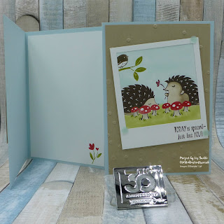 Inspire Create Challenge Hedgehugs Poloroid Card