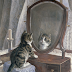 A Letter from the Cat