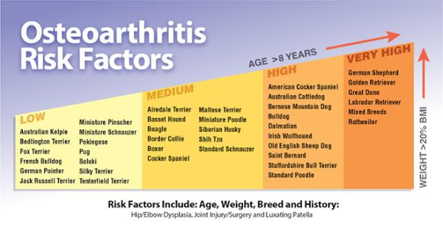 arthritis risk factors