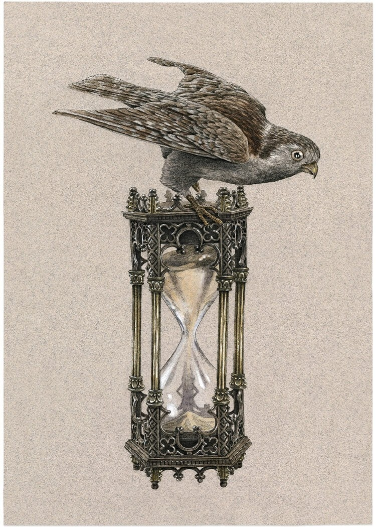 02-Hourglass-Steeven-Salvat-Ink-Drawings-Birds-on-Vintage-Objects-and-Machines-www-designstack-co