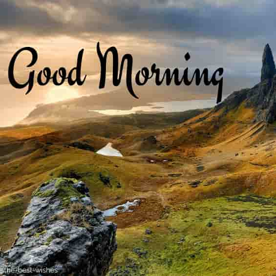 good morning wishes picture