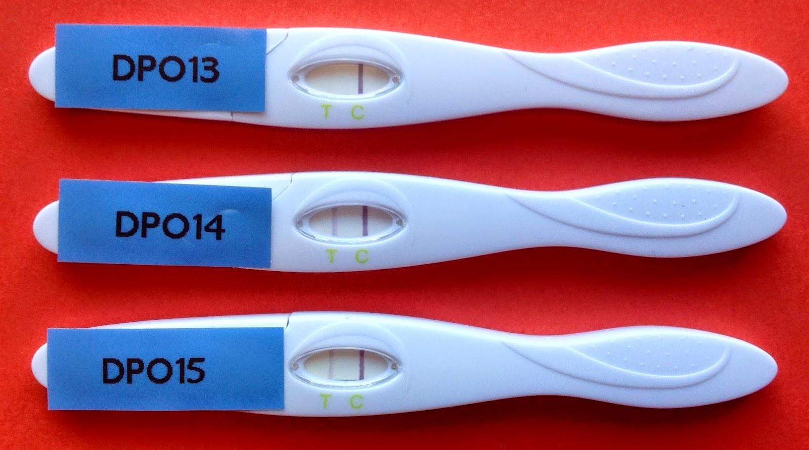 kan man ta graviditetstest når som helst i syklusen