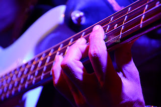 Detalle trastes de guitarra
