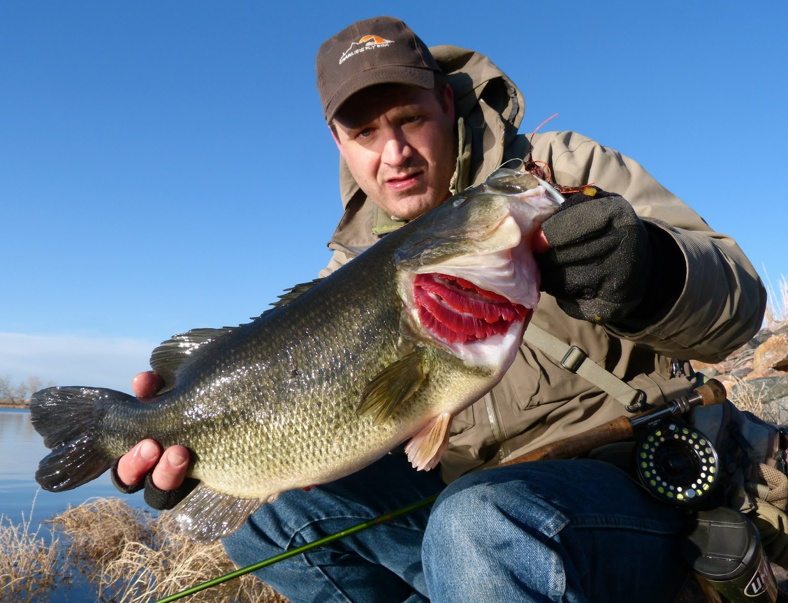 Colorado fly fishing reports opening day for Co fishing report