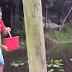 Πήρε ένα κουβά νερό και το έριξε στη λίμνη! Αυτό που ακολουθεί είναι τρομακτικό