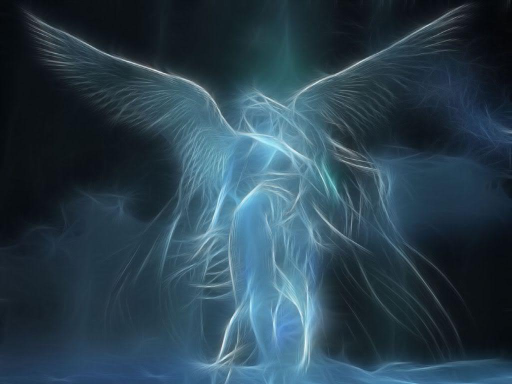 angel wallpaper free download | ram