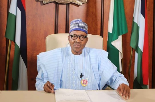 I'll Take Nigeria To The Next Level, says Buhari