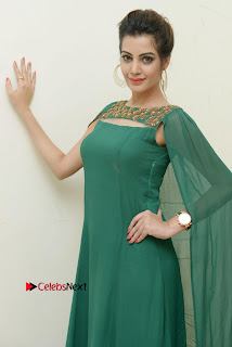Actress Diksha Panth Latest Pictures in Green Dress at Banti Poola Janaki Audio Function  0059