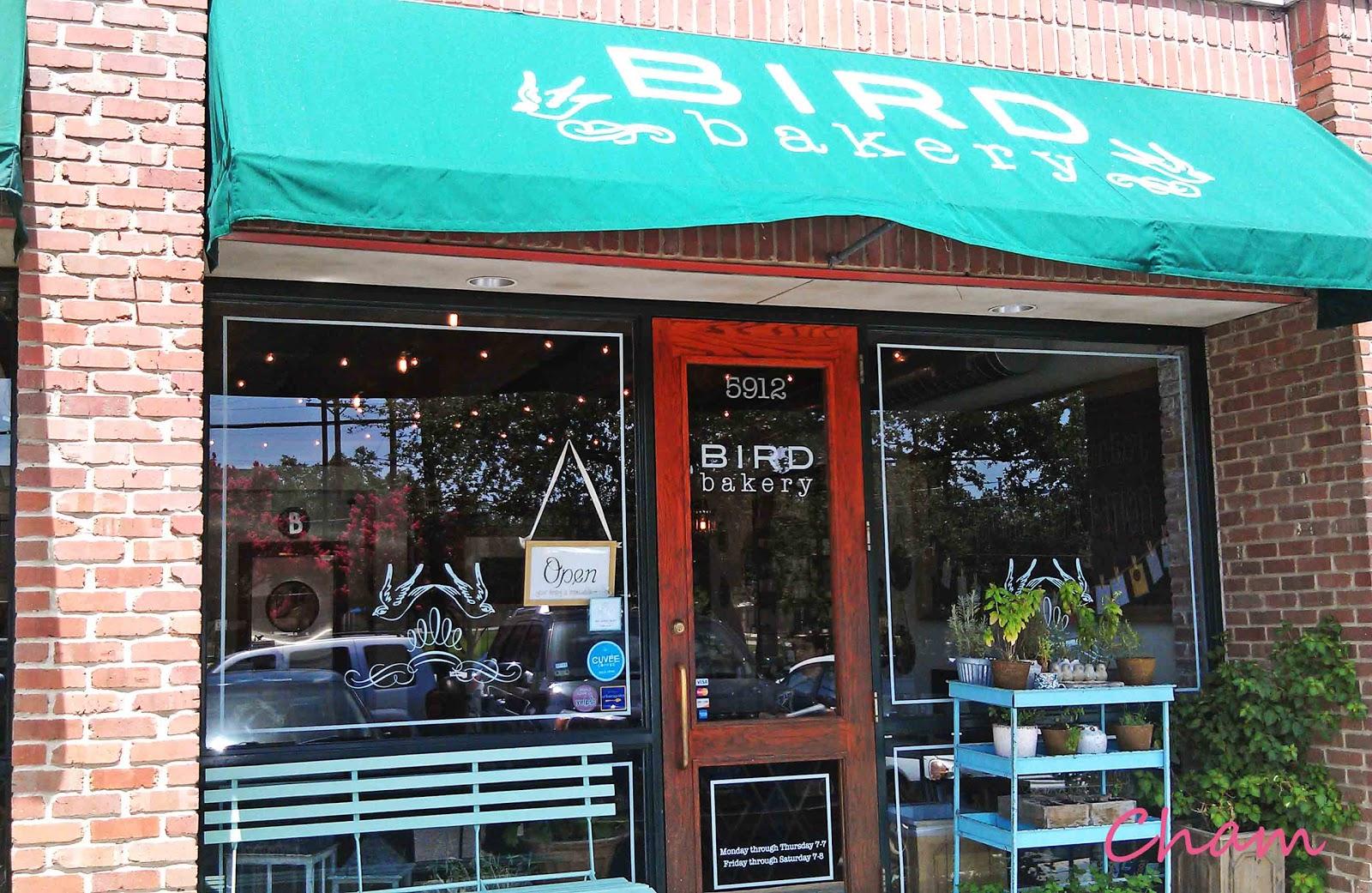 Bird Bakery Made Your Dream Come True San Antonio Tx