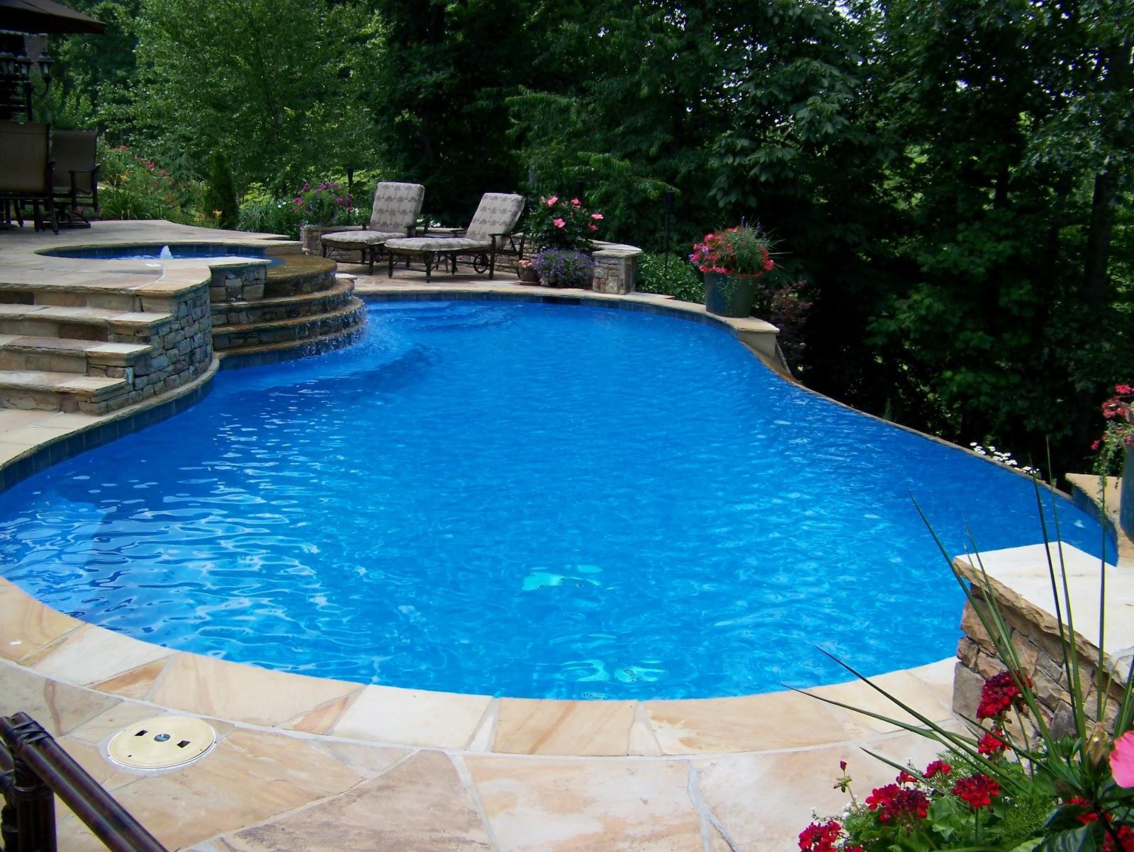 Backyard oasis pools vanishing edge pool hamilton mill for Pool design hamilton