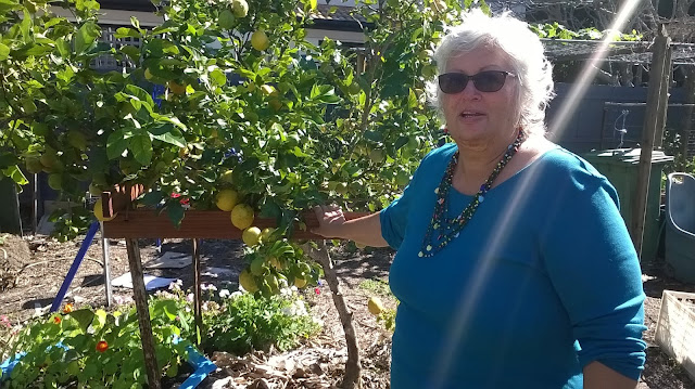 A Green Earth: Community and Sharing at Organic, Sustainable Home Garden