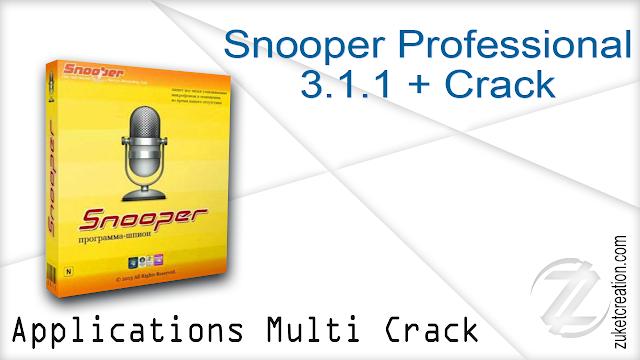 Snooper Professional 3.1.1 + Crack