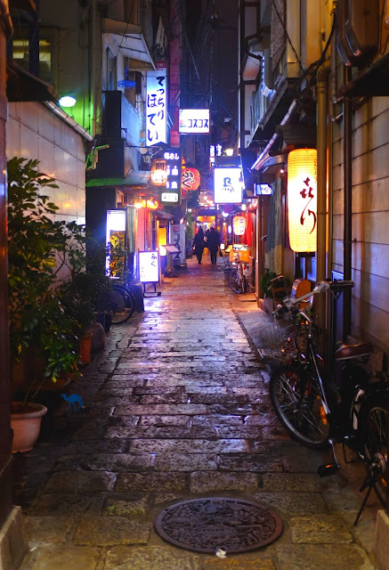 Le Chameau Bleu - Ruelles d'Osaka Voyage au  Japon