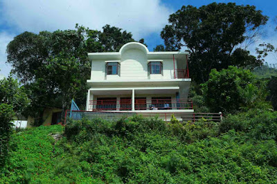 homestay in munnar in tea estate