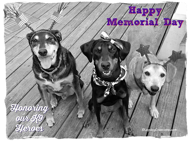 3 rescue dogs honor k9 heroes memorial day