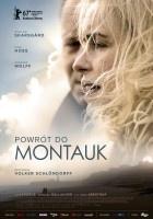 http://www.filmweb.pl/film/Powr%C3%B3t+do+Montauk-2017-771901