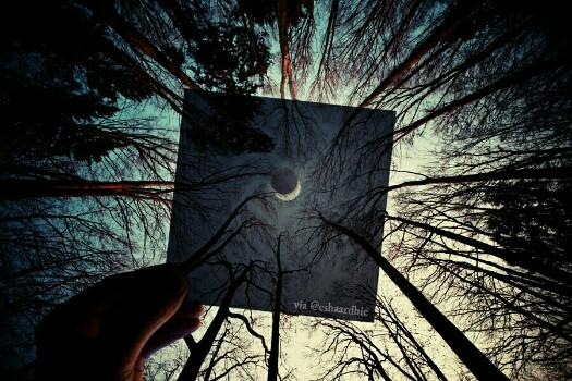 Menatap Langit Fotografi