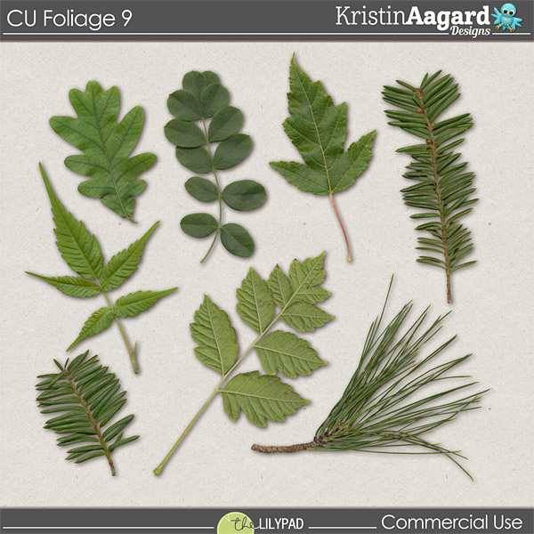 http://the-lilypad.com/store/Digital-Scrapbook-CU-Foliage-9.html