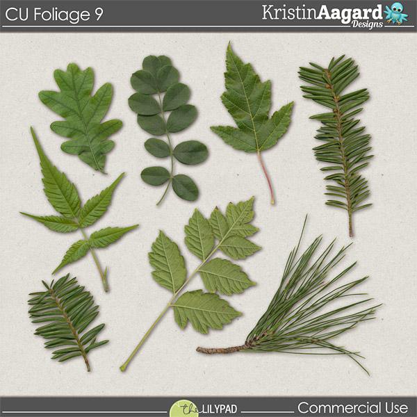 http://the-lilypad.com/store/Digital-Scrapbook-CU-Foliage-9.html
