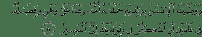 Surat Luqman Ayat 14
