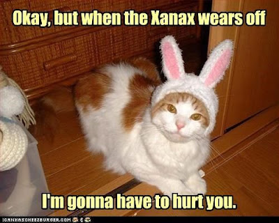 when the xanax wears off, xanax cat, easter comic, easter funnies, lolcat