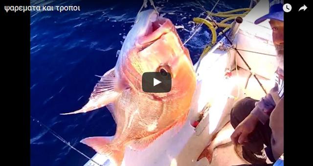 Ετσι θα πιάσετε μεγάλα ψάρια (video)