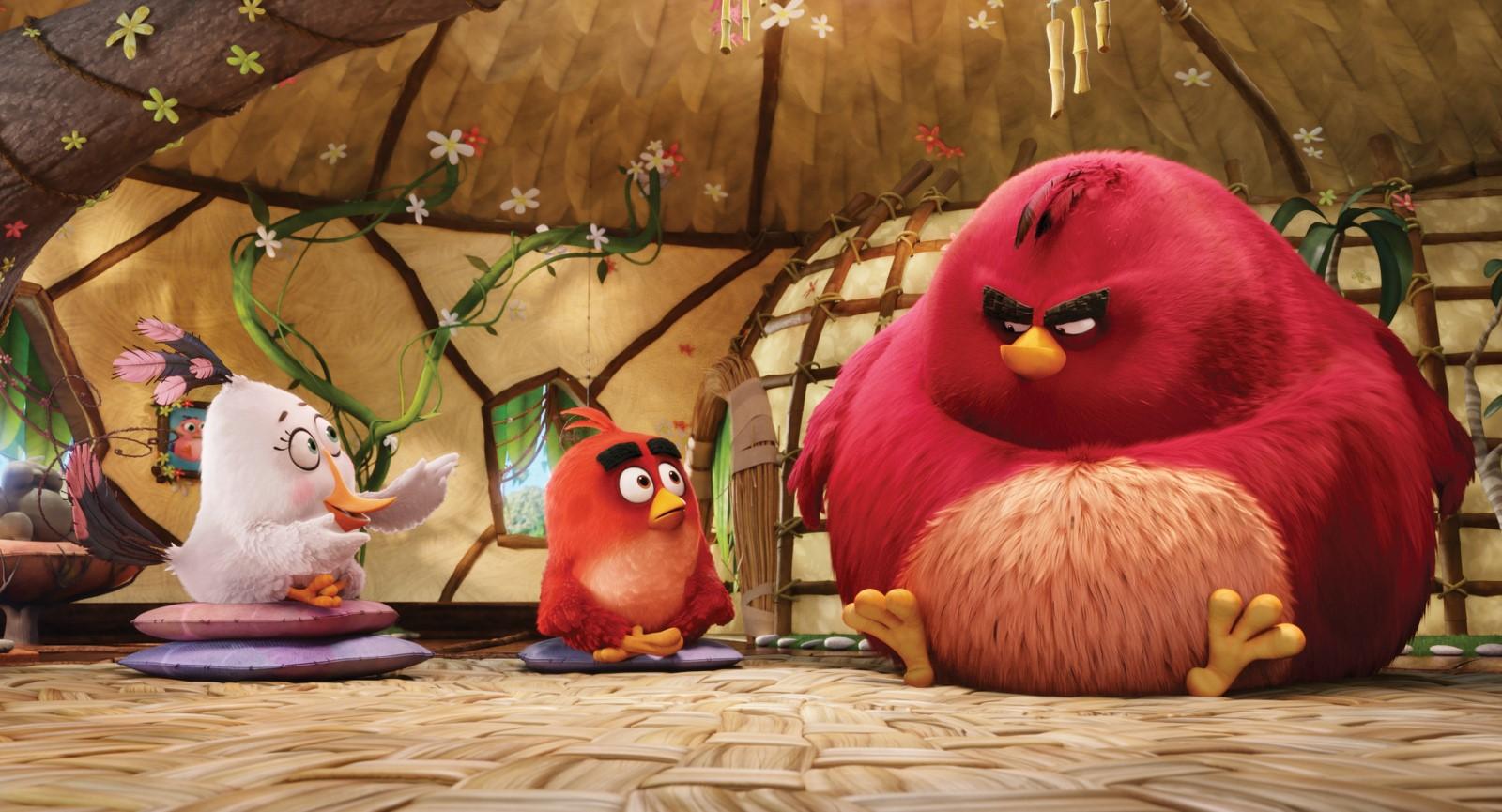 Red en una sesión para el control de la rabia (Angry Birds)