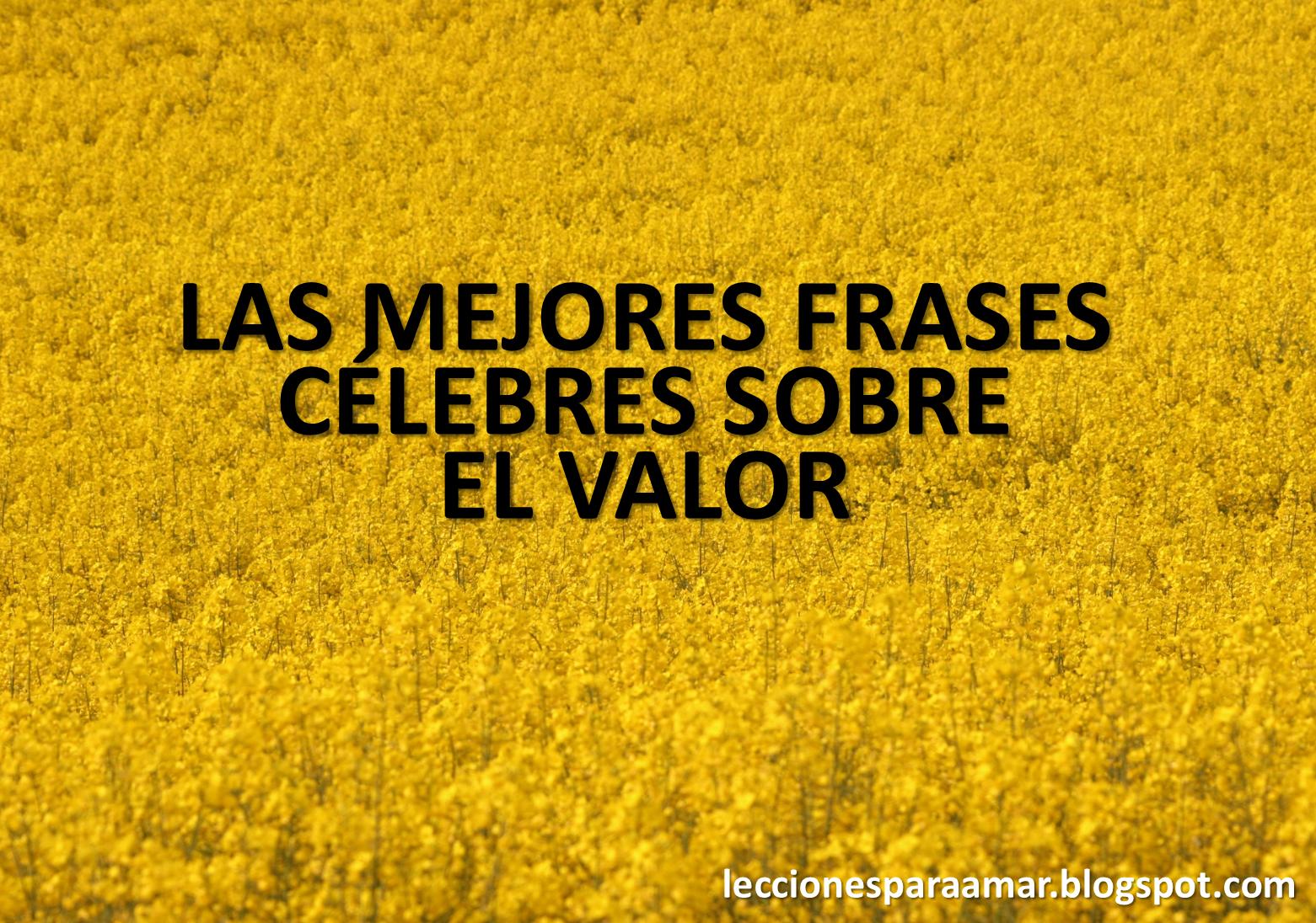 Frases De Valor: Lecciones Para Amar: Frases Célebres Sobre El Valor