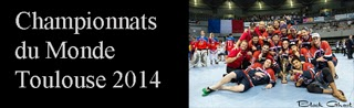 http://blackghhost-sport.blogspot.fr/2014/07/index-coupe-du-monde-roller-hockey.html