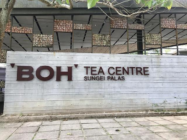 Cameron Highlands Boh Tea