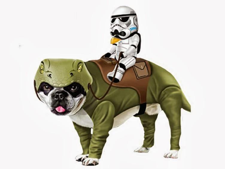 Cyborg Bunny Toys: Star Wars Pet Costumes!