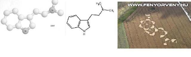 Hasonlóságok: DMT - A lélek molekula