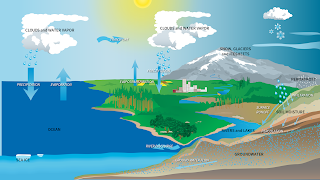 The water cycle describes how water evaporates from Earth's surface, rises into the atmosphere, cools, condenses to form clouds, and falls again to the surface as precipitation. About 75 percent of the energy (or heat) in the global atmosphere is transferred through the evaporation of water from Earth's surface. (Credit: NASA) Click to Enlarge.