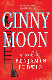 https://www.goodreads.com/book/show/34078013-ginny-moon?from_search=true