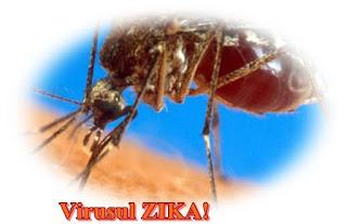 Ce este Virusul Zika care provoaca microcefalie copii nou nascuti