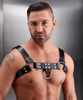 http://www.adonisent.com/store/store.php?search%5Bterms%5D=chest+harness&search%5Bmode%5D=exact&search%5Bcat%5D=&search%5Bsort_by%5D=name_asc