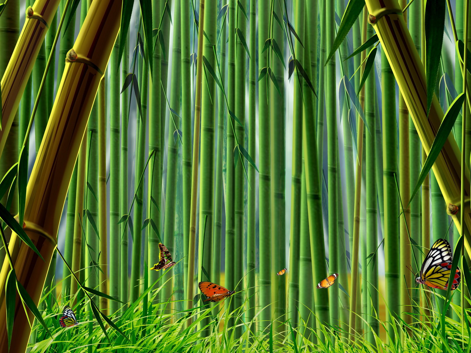 Bamboo Wallpaper: Bamboo Wallpapers Collection 20-30