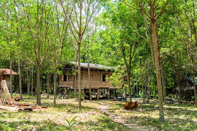 Koh-Yao-Noi-Thaïlande