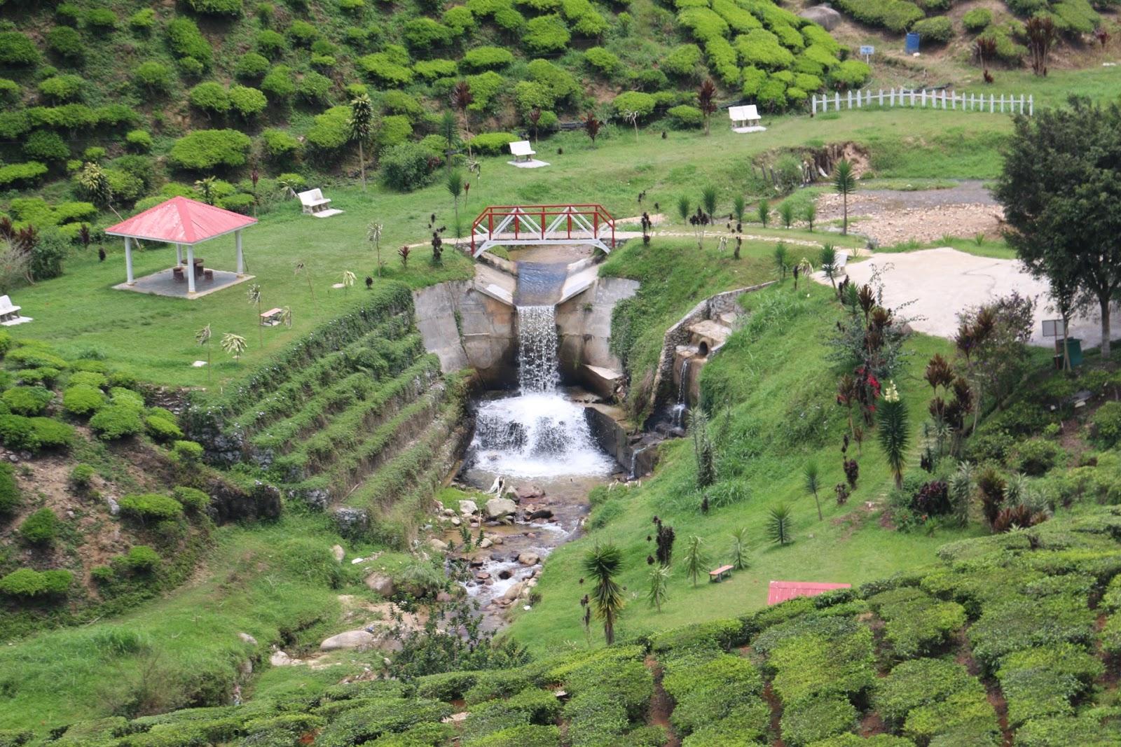 Destinasi menarik, tempat percutian, percutian budget, cameron highlands