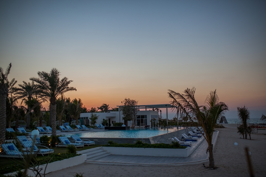 palms pool island zaya hotel