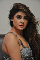 Actress Sony Charistha Latest Pos in Silver Saree at Black Money Movie Audio Launch  0034.jpg