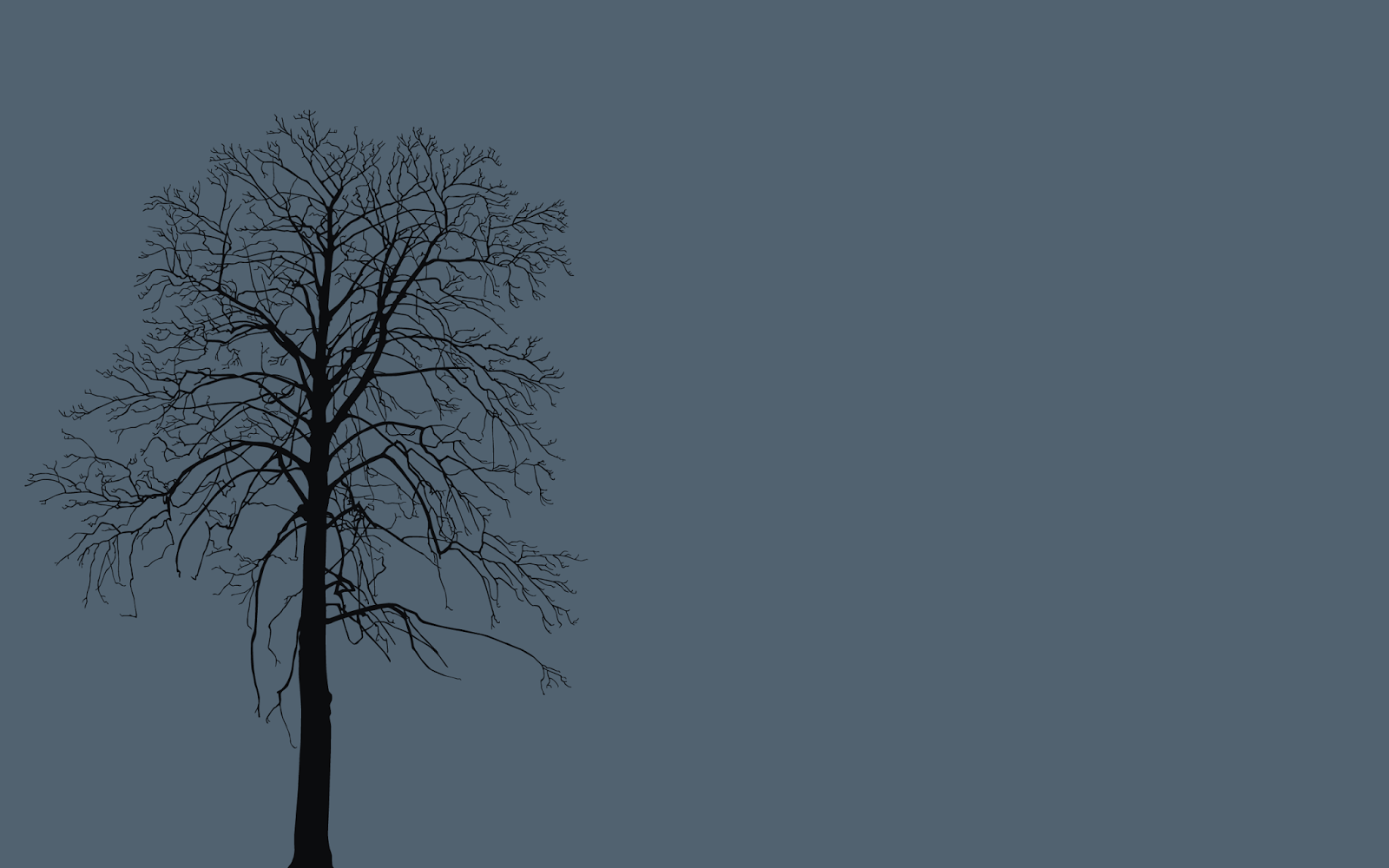 Tree Without Leaves Wallpapers