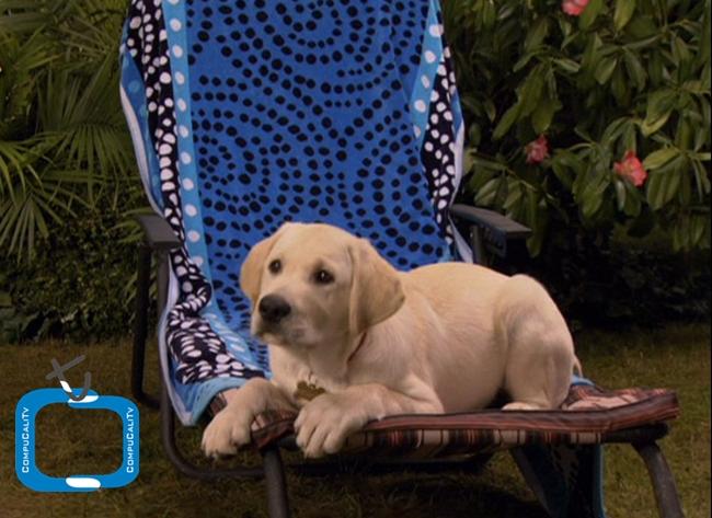 Marley Y Yo Los años de Cachorro 2011 DVDR Menu Latino ISO