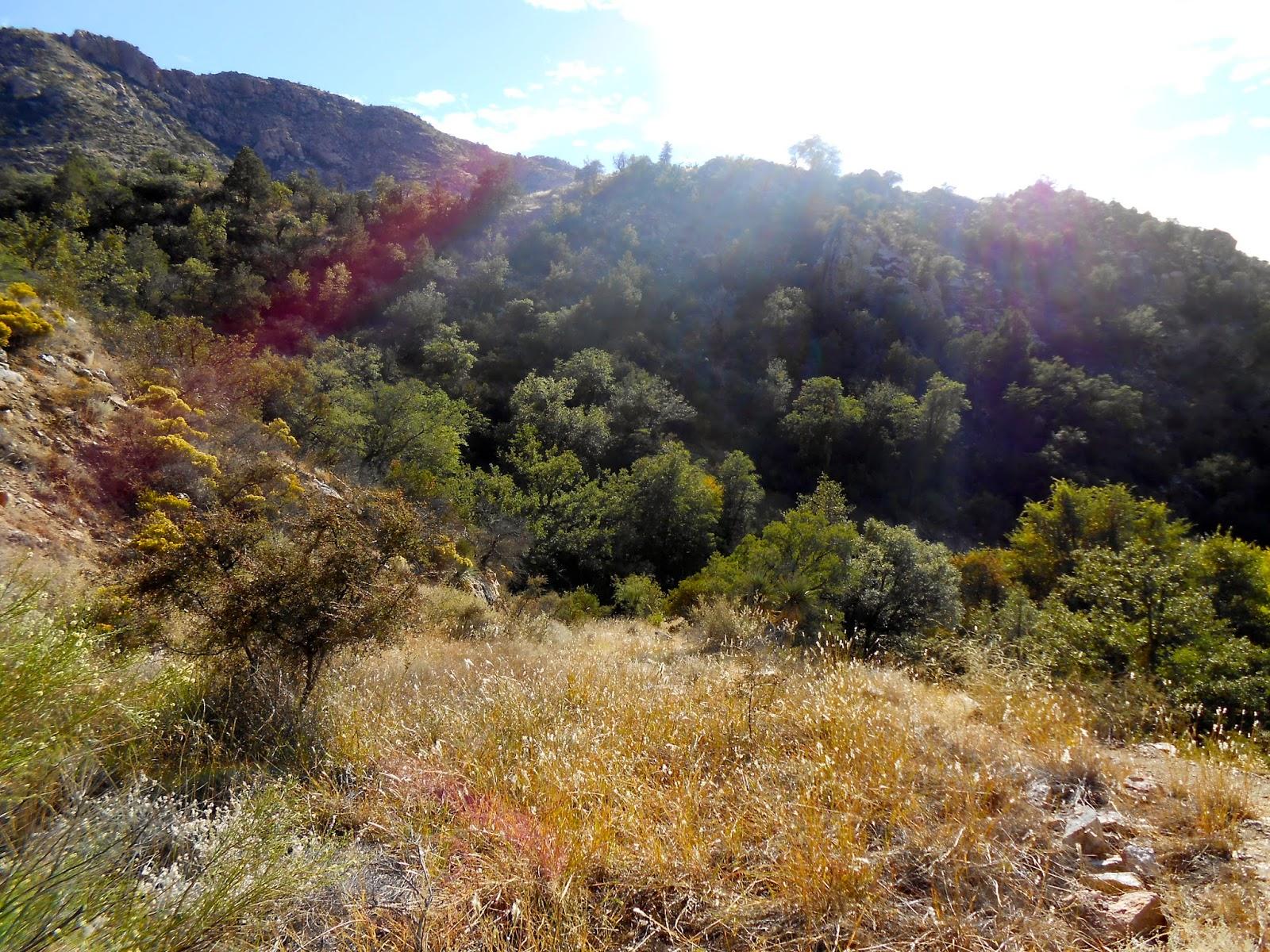 sycamore reservoir trail catalina mountains tucson arizona